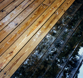 Deck Pressure Washing  Baltimore Maryland